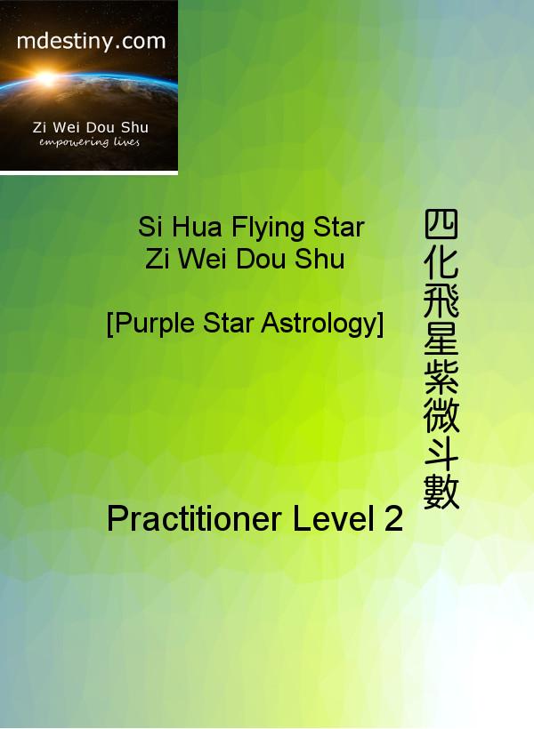 ZiWeiDouShu Practitioner2 Course