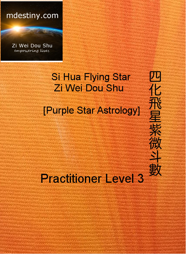 ZiWeiDouShu Practitioner3 Course