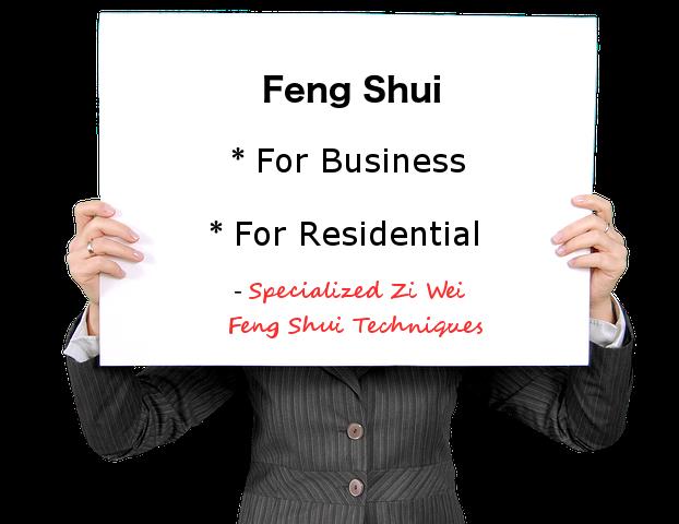 Zi Wei Feng Shui information