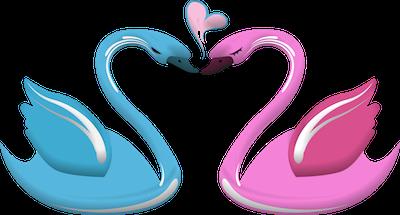 Romance and Marriage in Zi Wei Dou Shu ZWDS