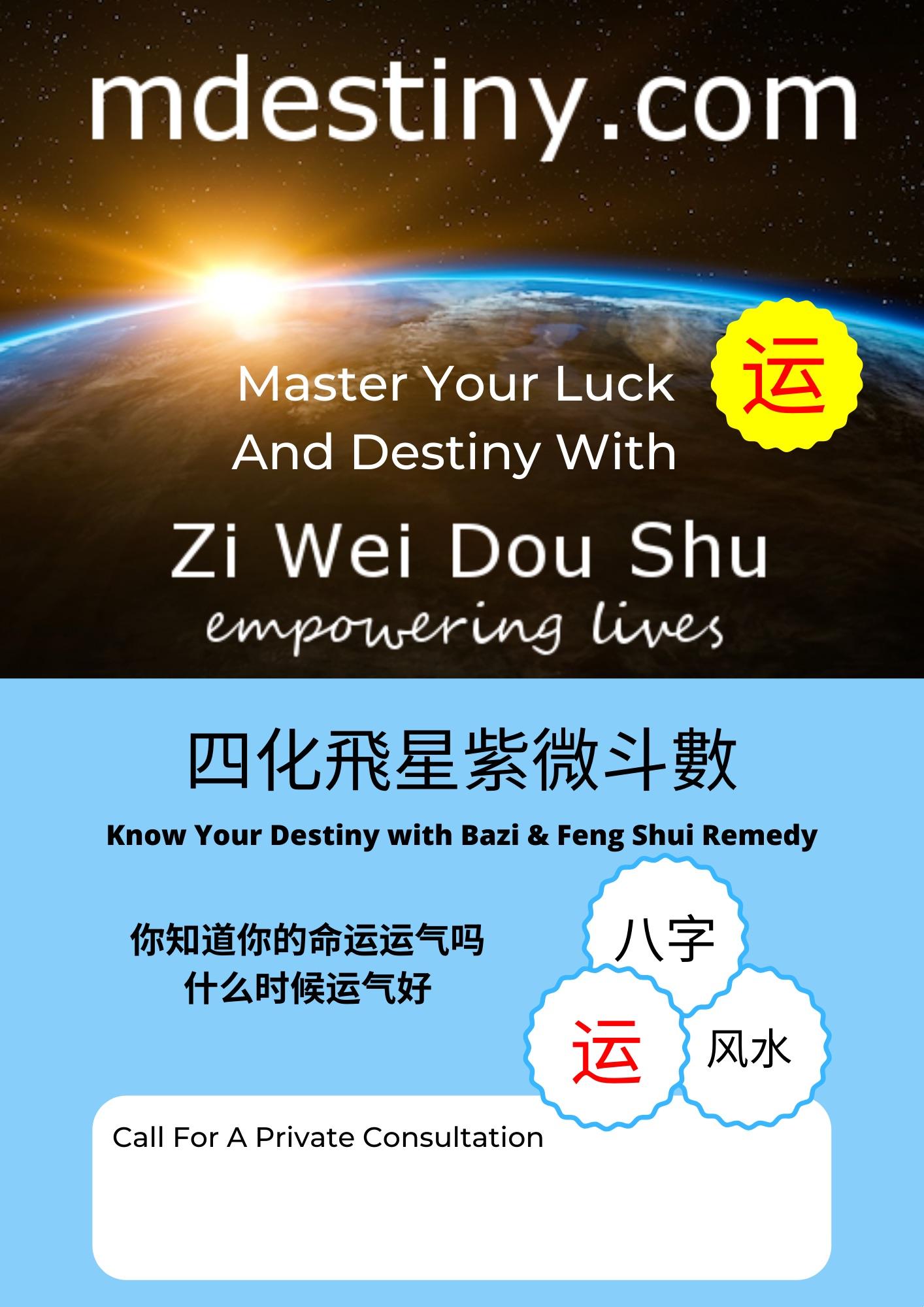 Zi Wei Dou Shu/Bazi Consultation