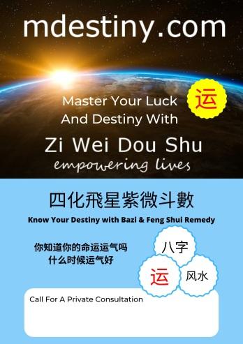 Zi Wei Dou Shu Bazi Consultation