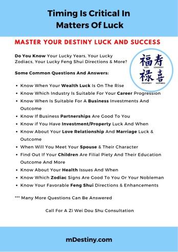 Zi Wei Dou Shu Consultation
